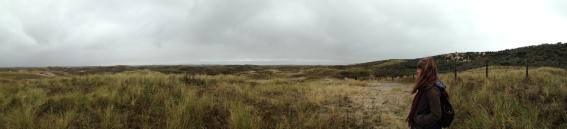 die Waterleidingduinen in Zandvoort